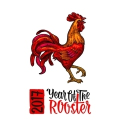 Red fiery rooster vintage black engraving vector