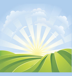Idyllic green fields with sunshine rays vector