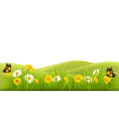 Spring background with grass flowers and vector