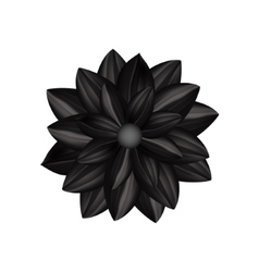 Black flower in gothic style vector