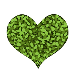 Abstract Green Heart Shape on White Background vector image vector image