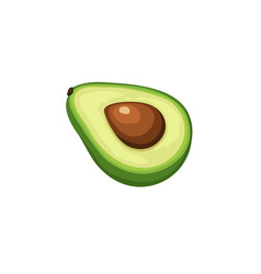 avocado icon isolated vector image vector image