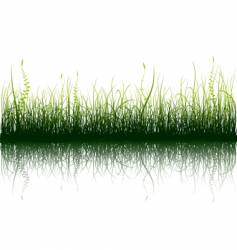 Green grass isolated on white vector
