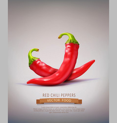 Two red hot chilli peppers isolated vector