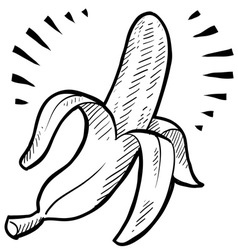 Doodle banana vector