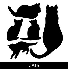 cats collection - silhouette color set of vector image