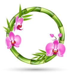 Green Bamboo Circle Frame with Pink Orchid Flowers vector image