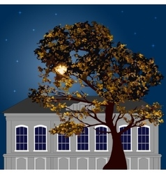 Autumn moonlight night in the city vector