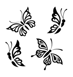 Collection black and white butterflies vector image vector image