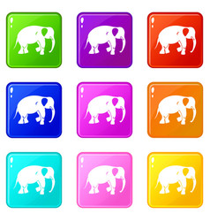 Elephant icons 9 set vector