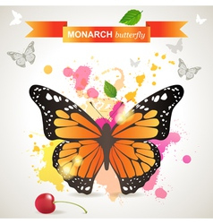 Monarch butterfly vector