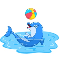Playful dolphin vector