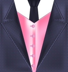 Abstract gray pink suit vector