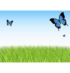 Grass sky butterfly vector