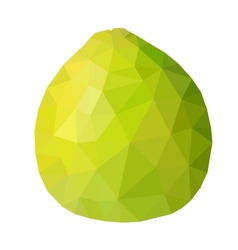 Low poly green pomelo vector