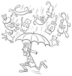 raining cats and dogs cartoon vector image vector image