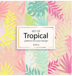 Set of modern tropical background for your design vector
