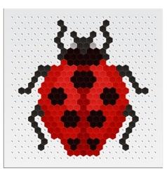Mosaic Ladybird vector image