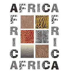Africa background with text and texture wild vector image vector image