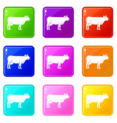Cow icons 9 set vector