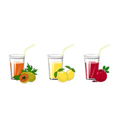 Papaya lemon and pomegranate juices vector