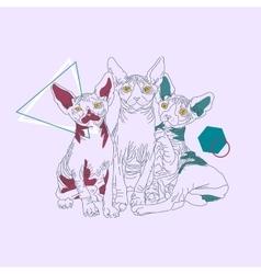 Three thin line cats vector image vector image