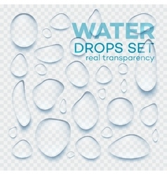 Realistic transparent water drops set vector