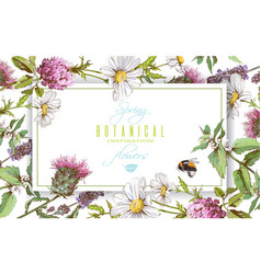 herbal horizontal banner vector image vector image