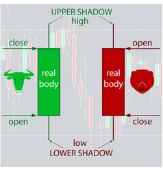 japanese candlestick charting basics for forex and vector image