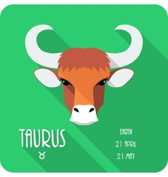 Zodiac sign taurus icon flat design vector