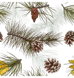 Pine branches colored seamless pattern vector