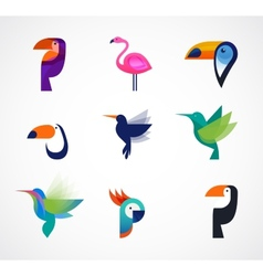Tropical birds - set of icons vector
