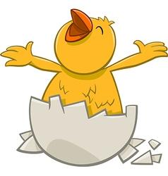 Little chicken cartoon character vector