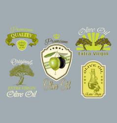 Oilve oil labels set vector image vector image