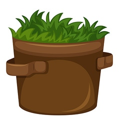 Grass growing in the pot vector