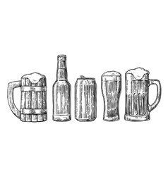 Beer glass mug can bottle hop vector image