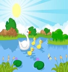 Duck family cartoon swimming vector image
