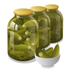 Canned jars of cucumbers vector