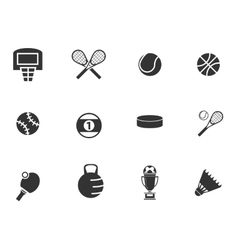 Sports balls icons set vector
