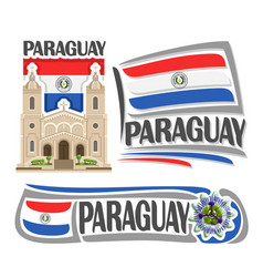 logo paraguay vector image