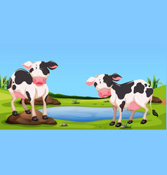 two cows standing in farmyard vector image