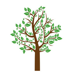 Colorful tree with leafy branches vector