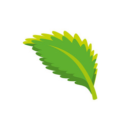 Leaf isolated ecology vector