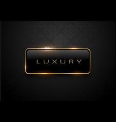 luxury black label with golden frame sparks on vector image vector image