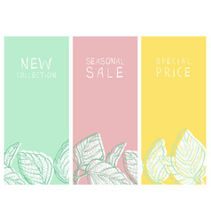 Shopping sale and new arrival banners or tags set vector