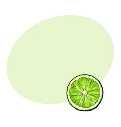 top view round slice half of ripe green lime vector image vector image