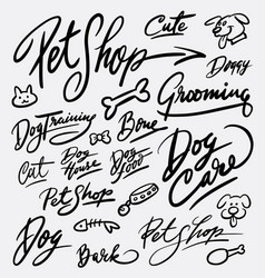 Pet shop and dog care hand written typography vector