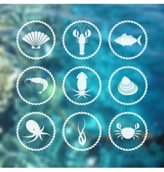Seafood icons set on blur background vector