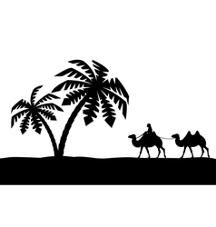 The man on the camel in palm trees vector