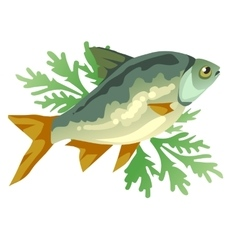 Cooked fish with dill icon food vector image